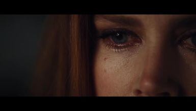 Nocturnal Animals Analysis  Differences in the Novel